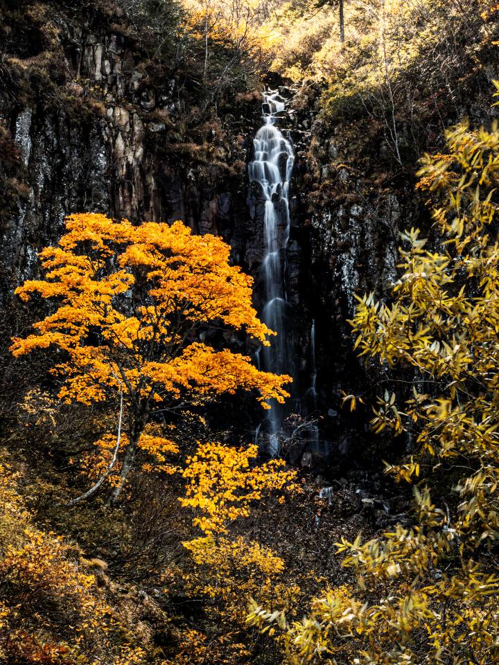 白老滝 イワナ沢の滝 初心者 沢登り