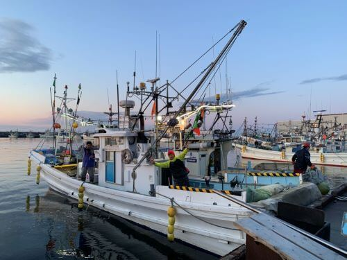 白老 漁恵丸 海釣り 月別釣果情報