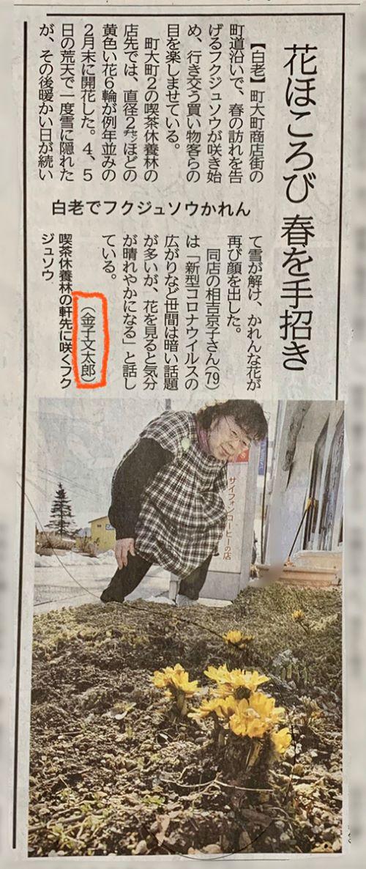 白老 新聞 北海道新聞 苫小牧民報 室蘭民報 広報元気 しょう新聞 情報