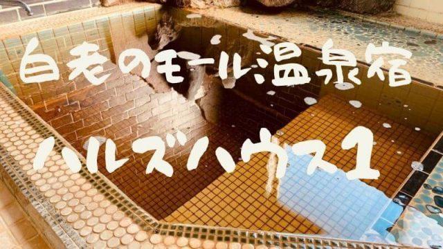 白老 貸別荘 ハルズハウス1 民泊 温泉 宿泊 モール温泉